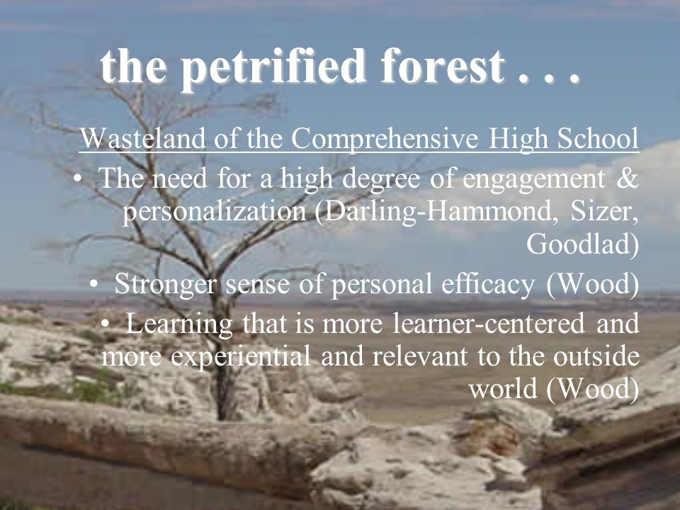 the petrified forest... Wasteland of the Comprehensive High School The need for a high degree of engagement & personalization (Darling-Hammond, Sizer,