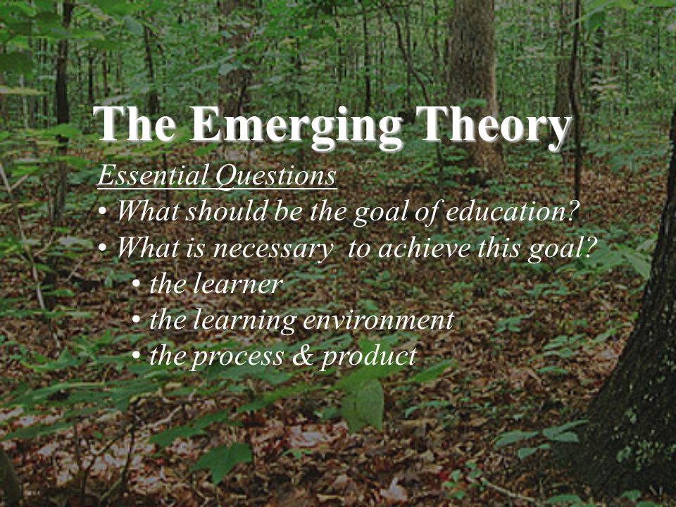 Essential Questions What should be the goal of education? What is necessary to achieve this goal? the learner the learning environment the process & p
