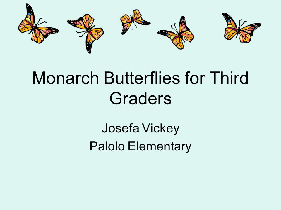 Monarch Butterflies for Third Graders Josefa Vickey Palolo Elementary