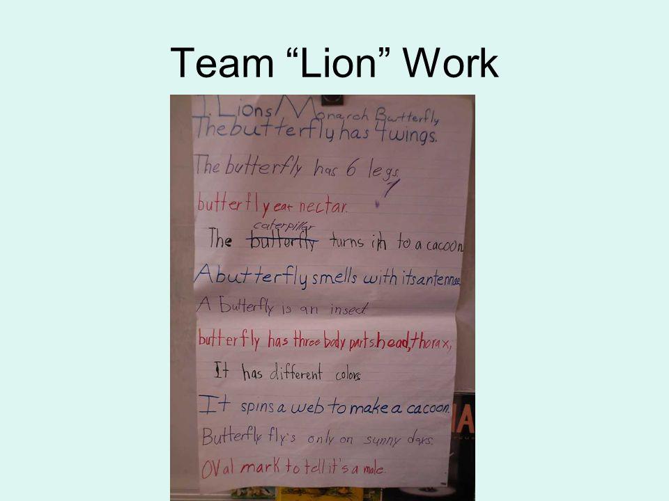 Team Lion Work