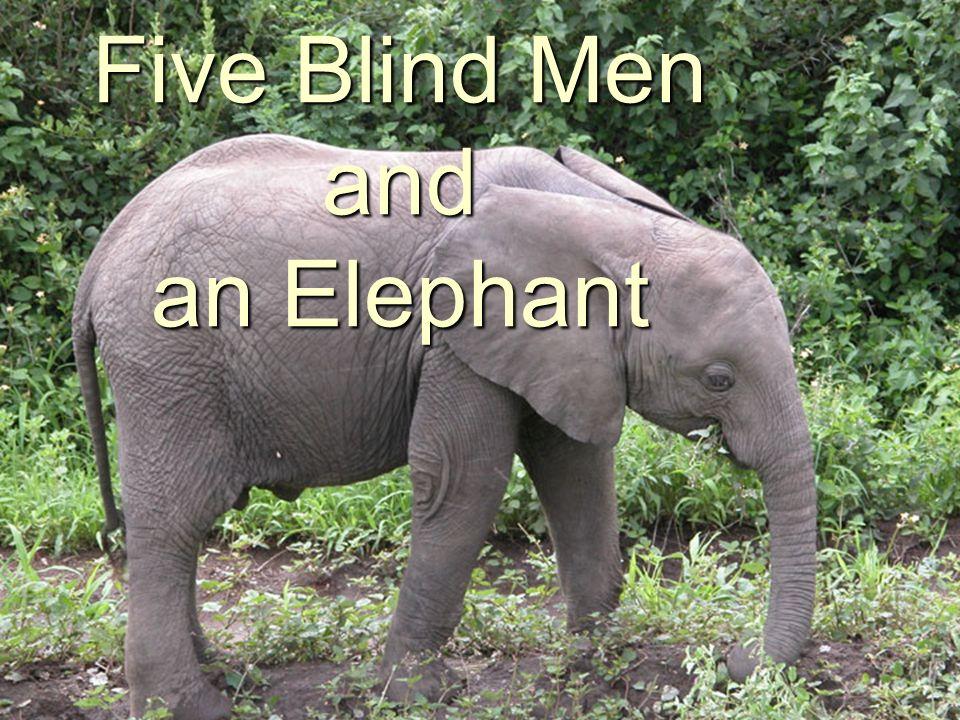 Five blind men were taken to see an elephant.