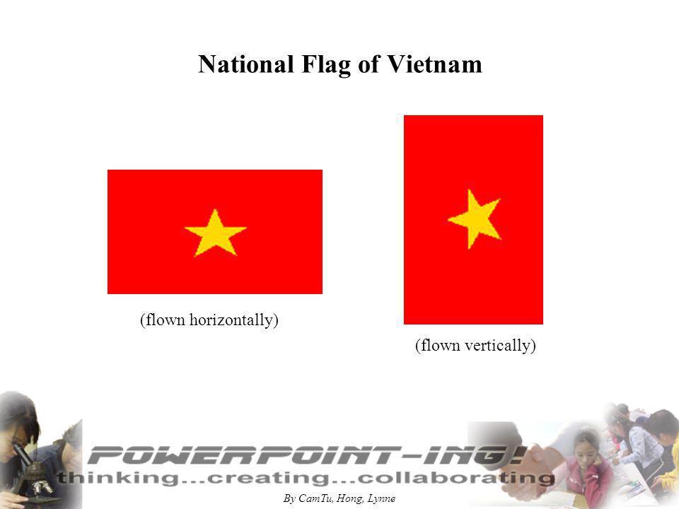 By CamTu, Hong, Lynne National Flag of Vietnam (flown horizontally) (flown vertically)