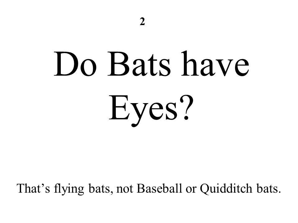 Do Bats have Eyes? Thats flying bats, not Baseball or Quidditch bats. 2