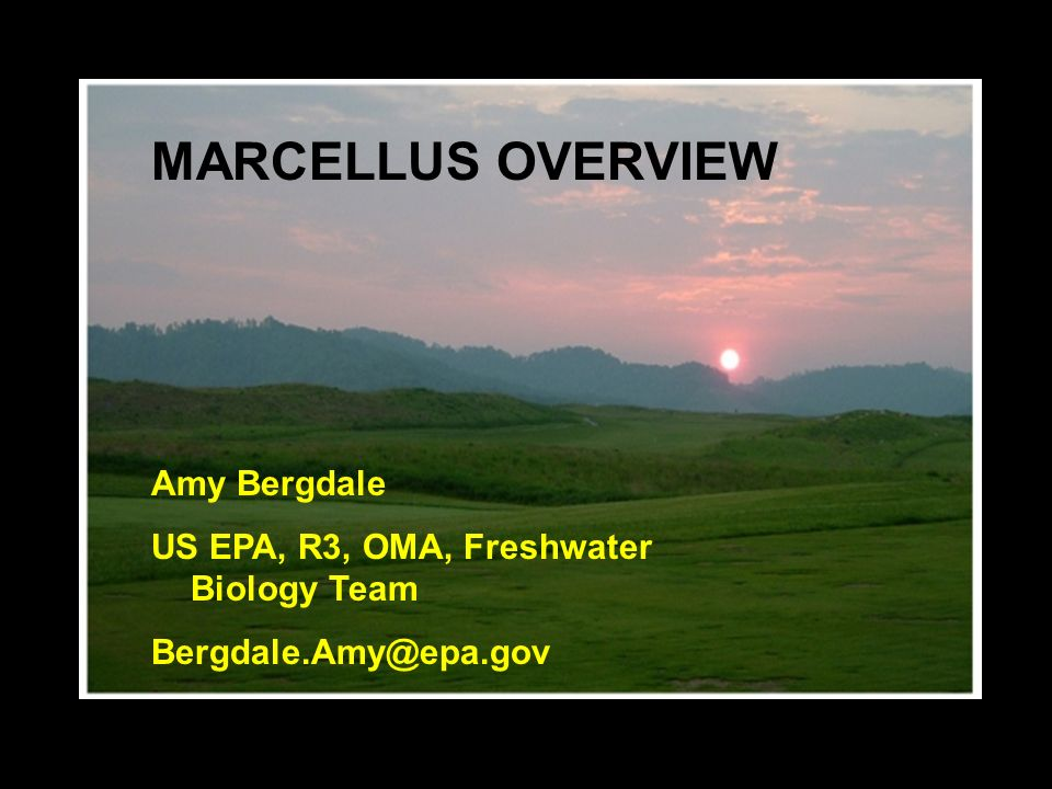 MARCELLUS OVERVIEW Amy Bergdale US EPA, R3, OMA, Freshwater Biology Team Bergdale.Amy@epa.gov