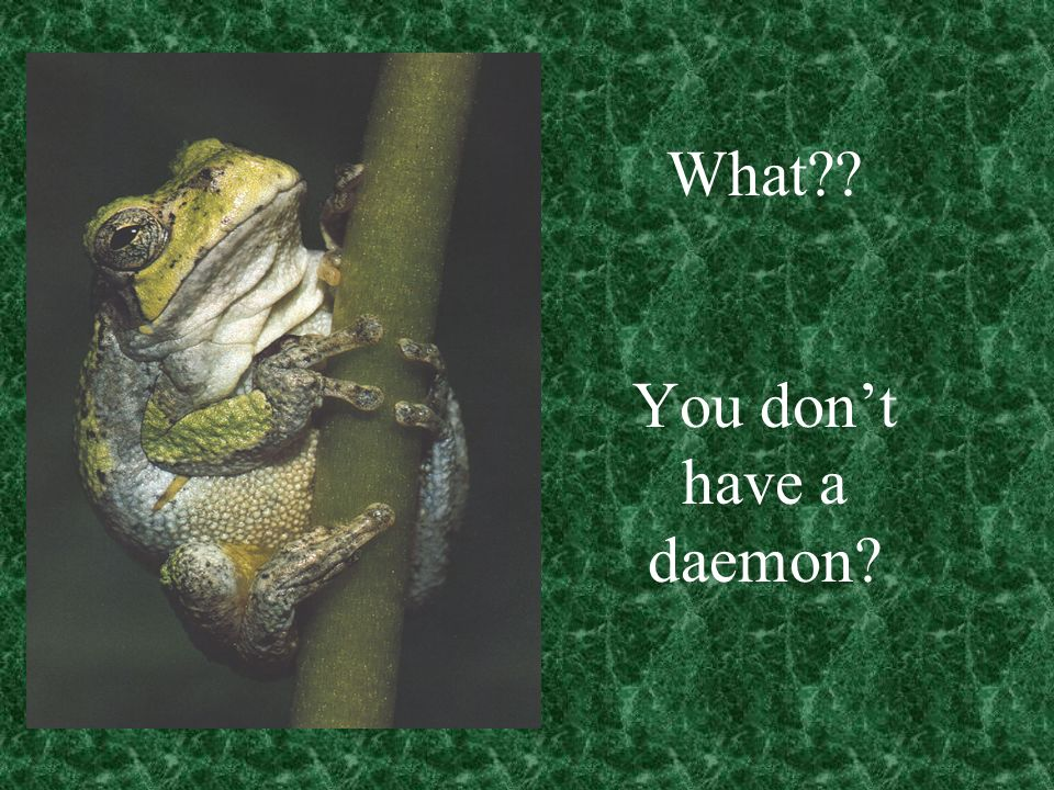 What You dont have a daemon