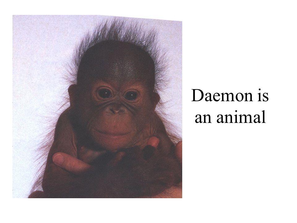 Daemon is an animal