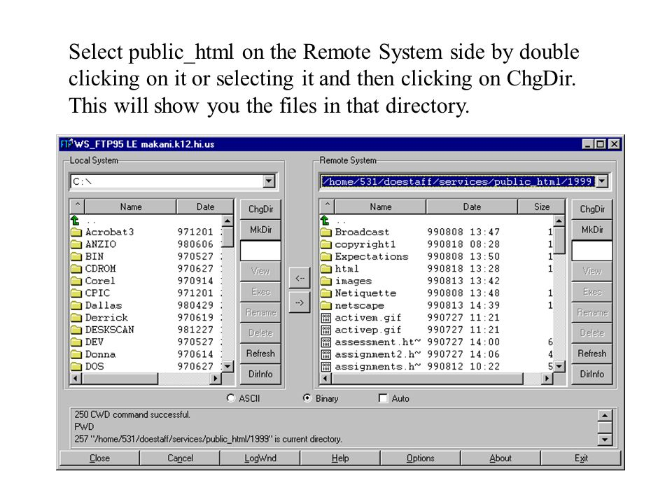 Select public_html on the Remote System side by double clicking on it or selecting it and then clicking on ChgDir.