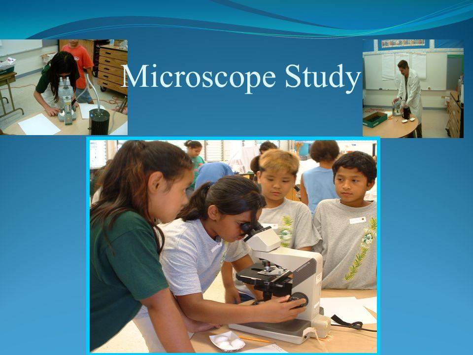Microscope Study