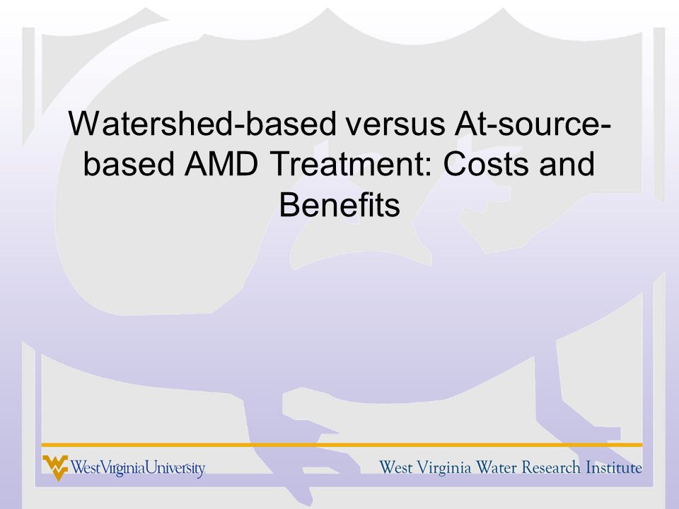 Watershed-based versus At-source- based AMD Treatment: Costs and Benefits