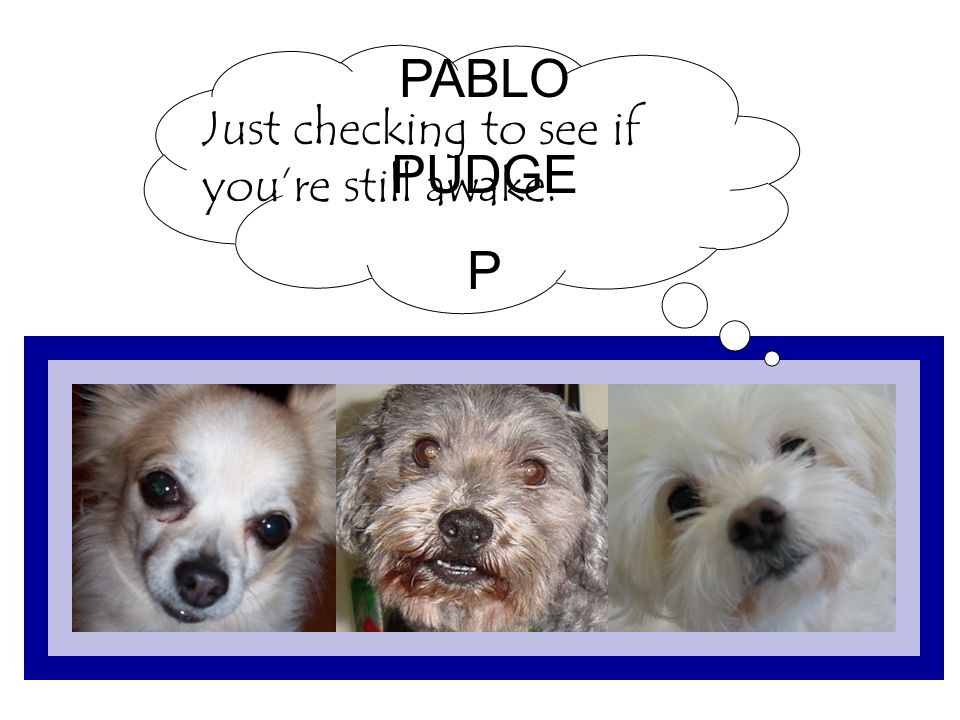 Just checking to see if youre still awake. PABLO PUDGE P