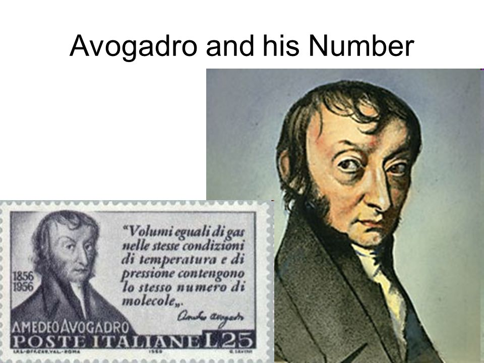 Avogadro and his Number