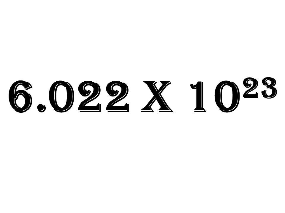 6.022 x 10 23