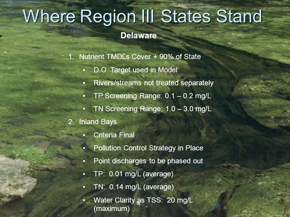 Where Region III States Stand Delaware 1.Nutrient TMDLs Cover + 90% of State D.O. Target used in Model Rivers/streams not treated separately TP Screen
