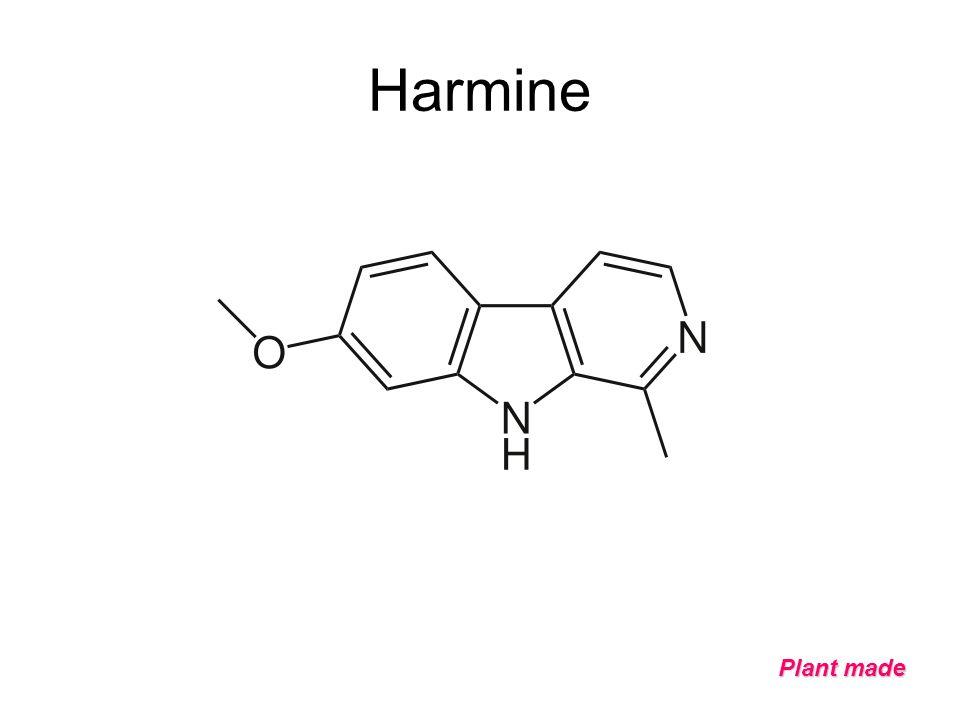 Harmine Plant made
