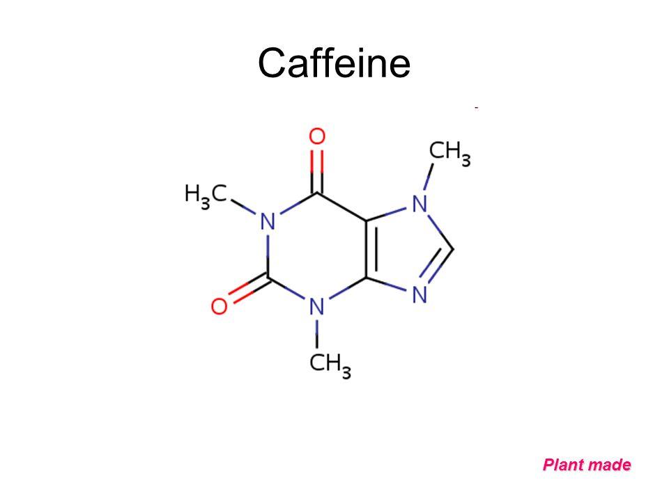 Caffeine Plant made