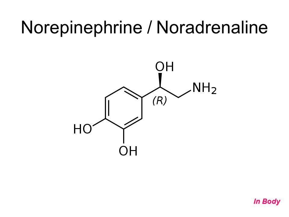 Norepinephrine / Noradrenaline In Body