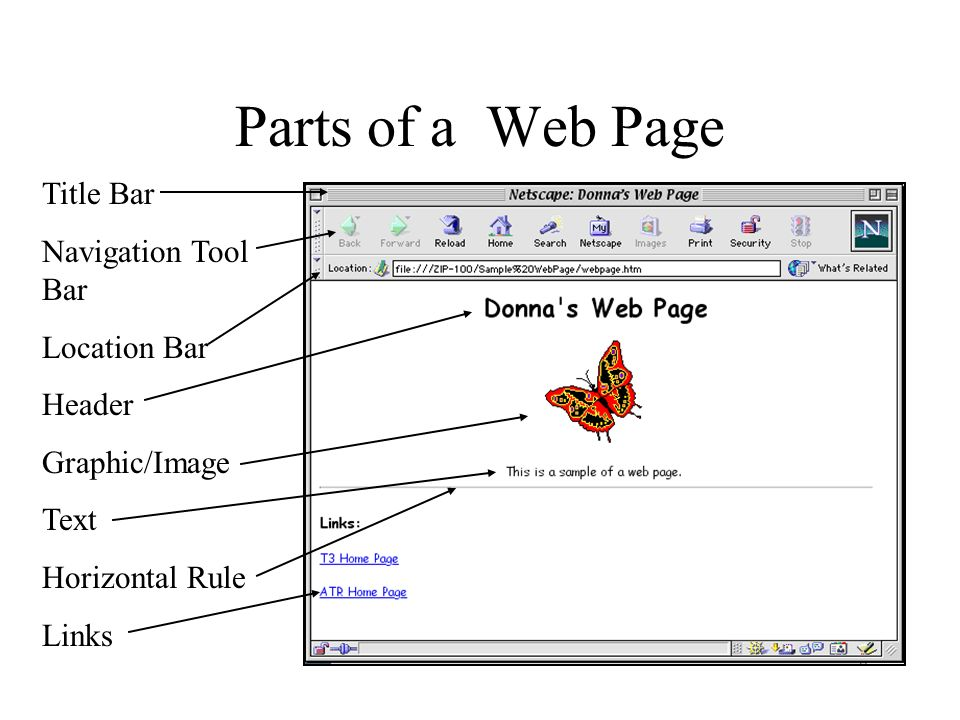 Parts of a Web Page Title Bar Navigation Tool Bar Location Bar Header Graphic/Image Text Horizontal Rule Links