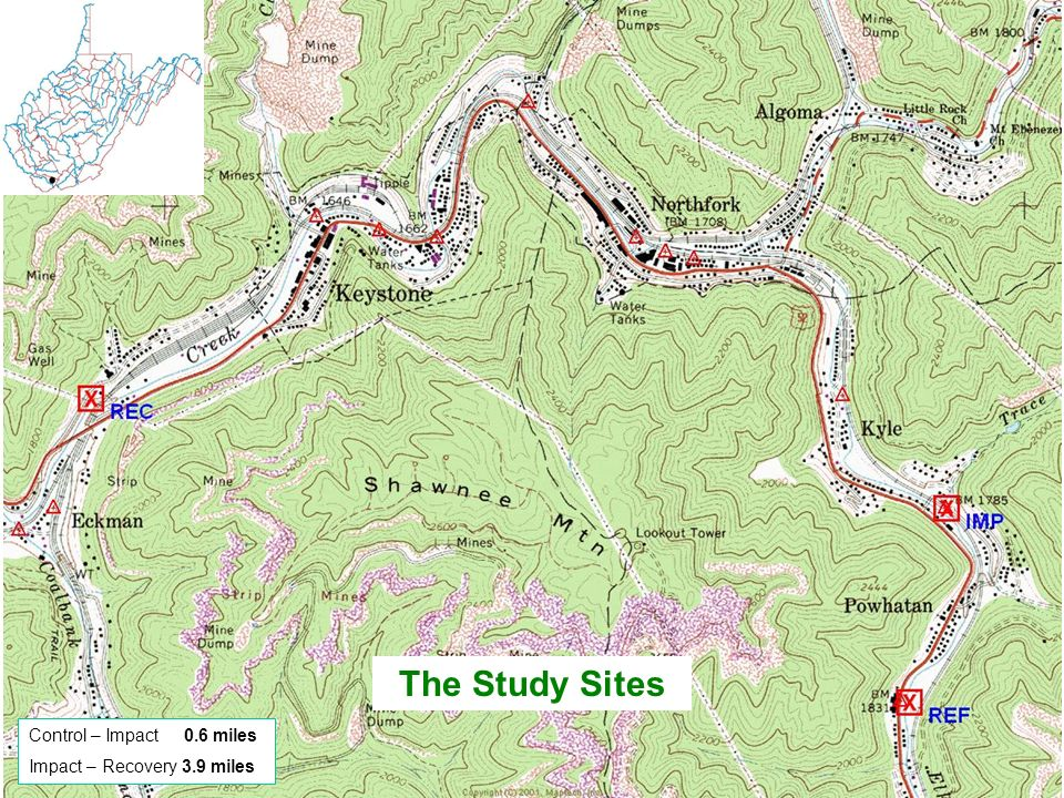 The Study Sites Control – Impact 0.6 miles Impact – Recovery 3.9 miles