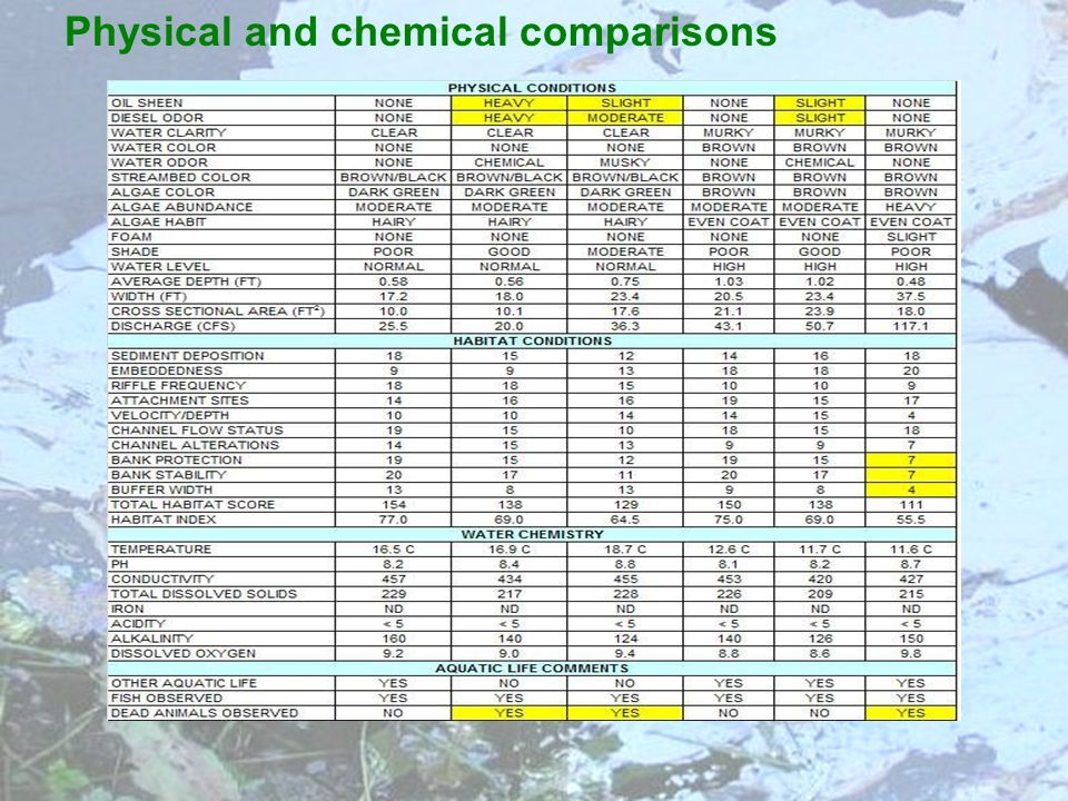 Physical and chemical comparisons