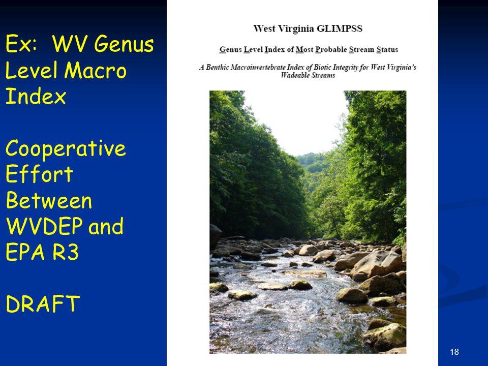 18 Ex: WV Genus Level Macro Index Cooperative Effort Between WVDEP and EPA R3 DRAFT