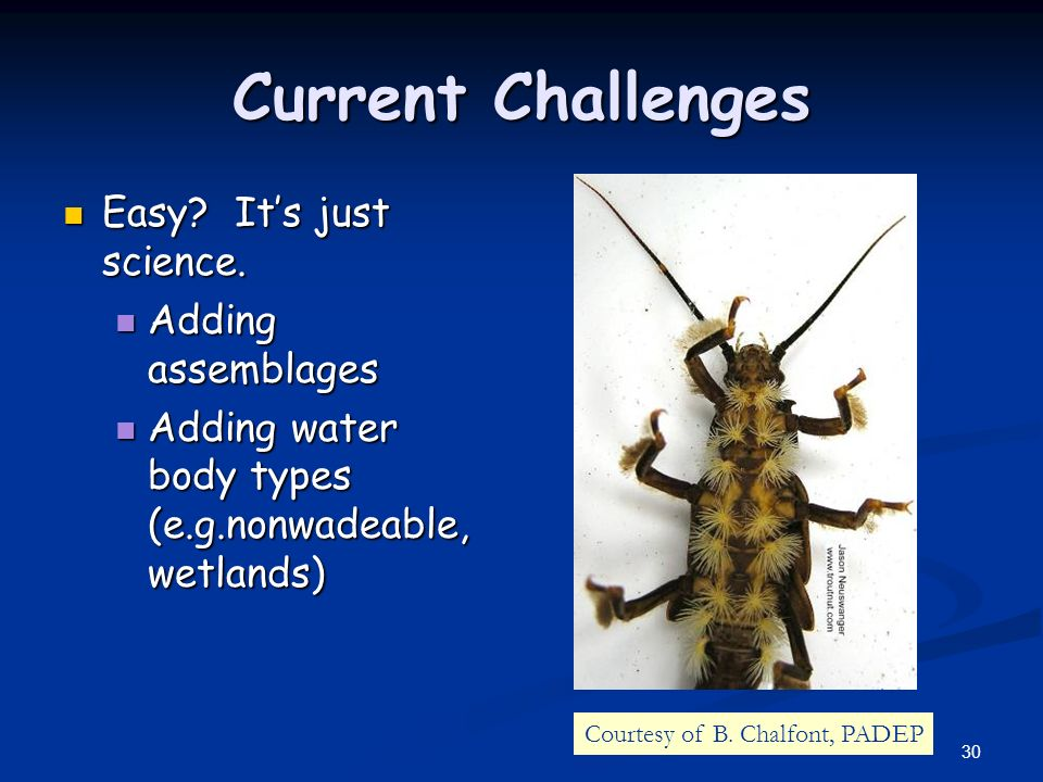 30 Current Challenges Easy? Its just science. Easy? Its just science. Adding assemblages Adding assemblages Adding water body types (e.g.nonwadeable,
