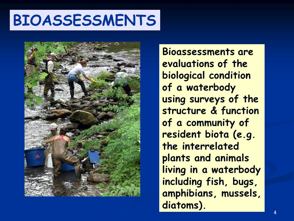 4 Bioassessments are evaluations of the biological condition of a waterbody using surveys of the structure & function of a community of resident biota