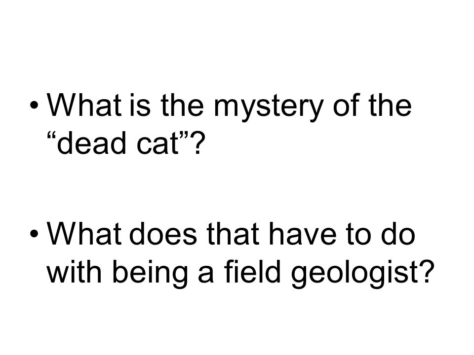What is the mystery of the dead cat What does that have to do with being a field geologist