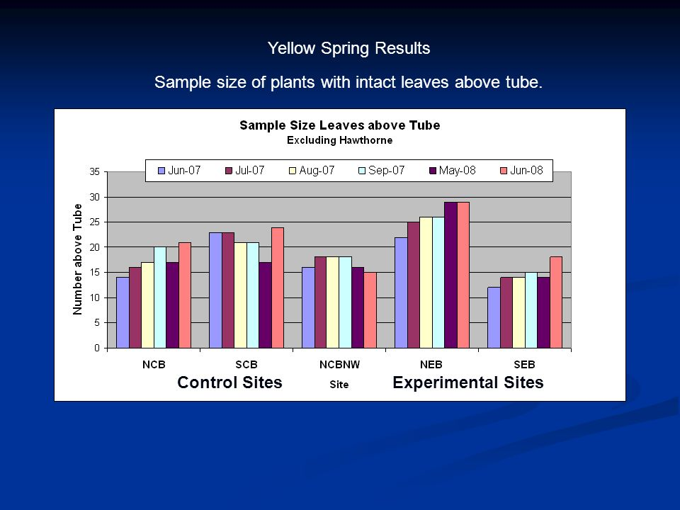 Yellow Spring Results Experimental SitesControl Sites Sample size of plants with intact leaves above tube.
