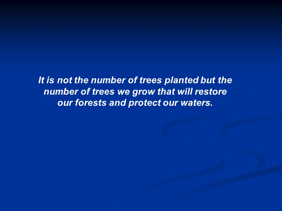 It is not the number of trees planted but the number of trees we grow that will restore our forests and protect our waters.