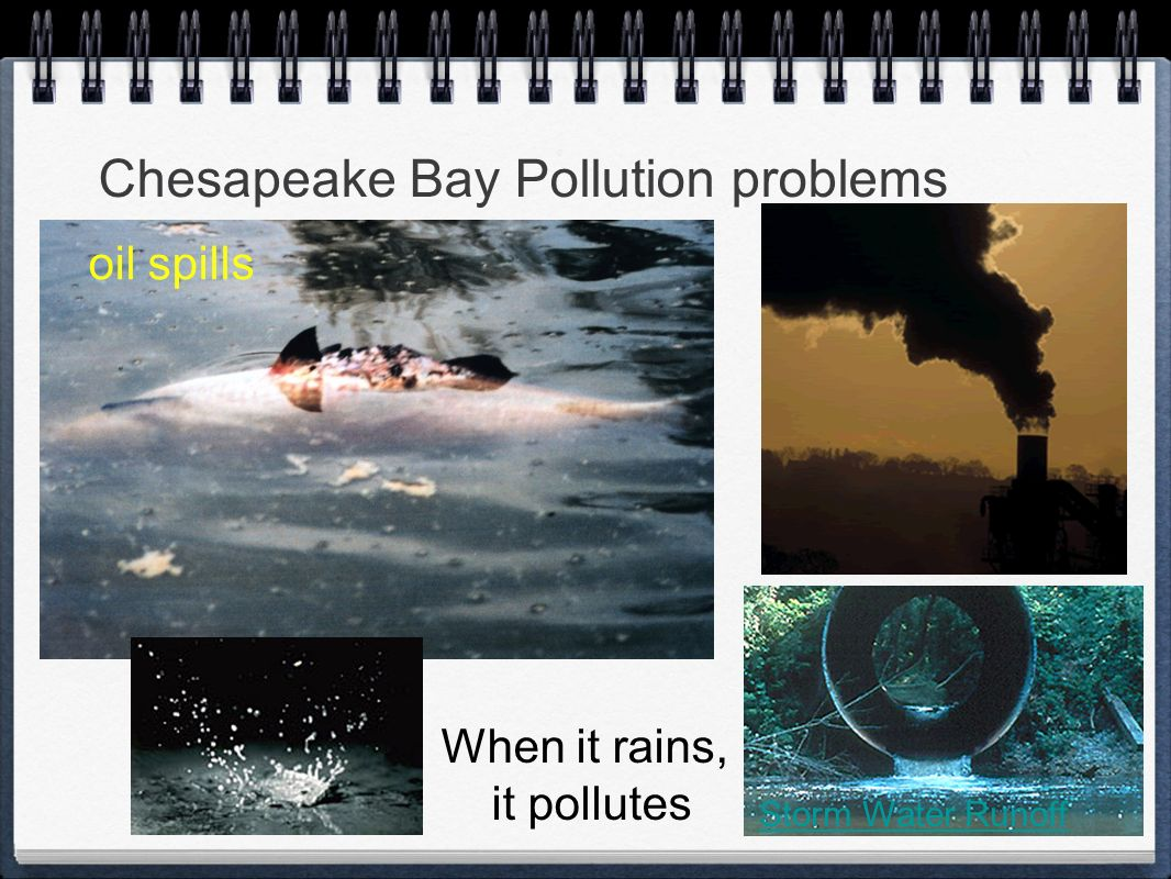 Chesapeake Bay Pollution problems oil spills Storm Water Runoff When it rains, it pollutes