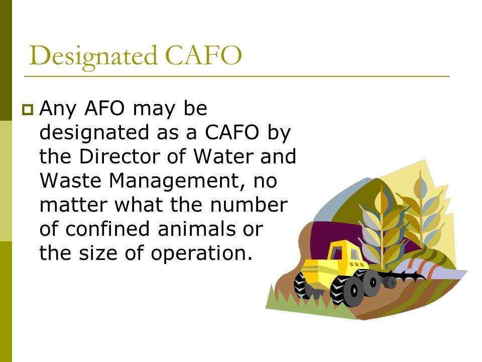 Designated CAFO Any AFO may be designated as a CAFO by the Director of Water and Waste Management, no matter what the number of confined animals or the size of operation.