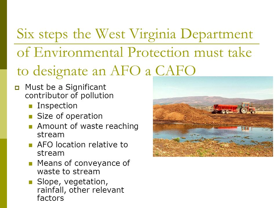 Six steps the West Virginia Department of Environmental Protection must take to designate an AFO a CAFO Must be a Significant contributor of pollution Inspection Size of operation Amount of waste reaching stream AFO location relative to stream Means of conveyance of waste to stream Slope, vegetation, rainfall, other relevant factors