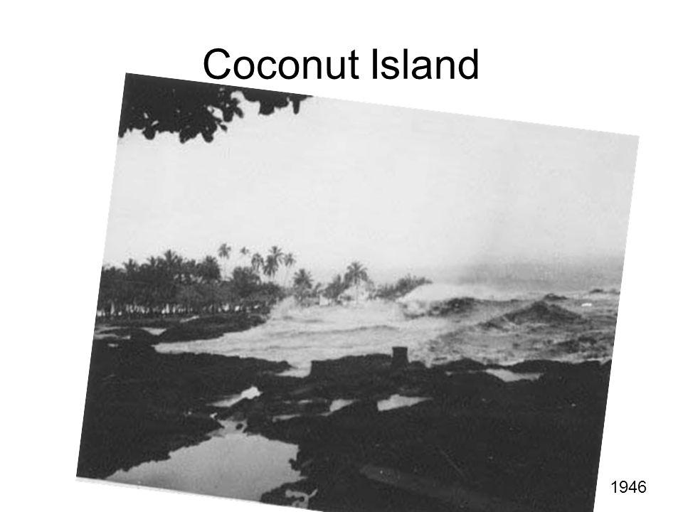 Coconut Island 1946