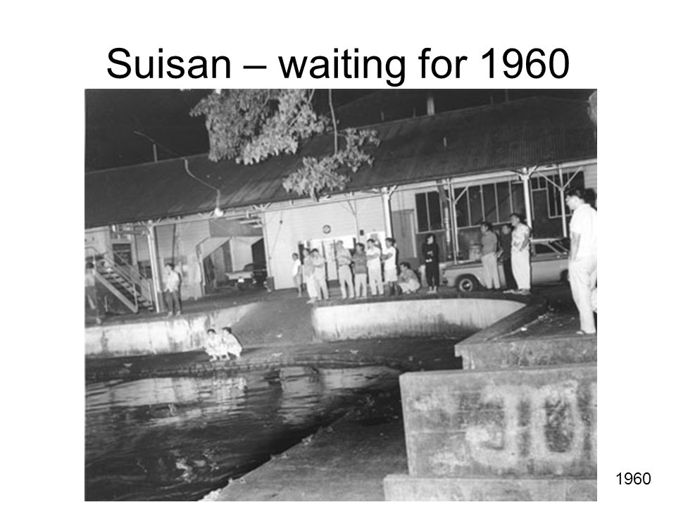 Suisan – waiting for