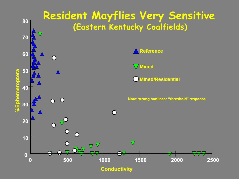 Reference Mined Mined/Residential %Ephemeroptera Conductivity 0 10 20 30 40 50 60 70 80 05001000150020002500 Resident Mayflies Very Sensitive (Eastern