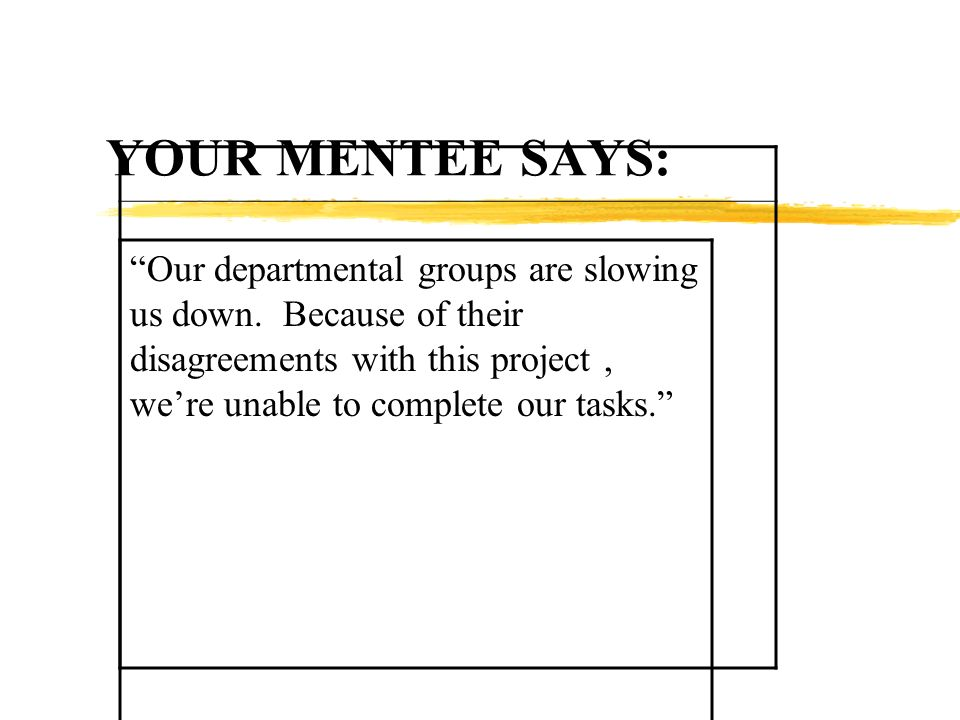 YOUR MENTEE SAYS: Our departmental groups are slowing us down. Because of their disagreements with this project, were unable to complete our tasks.