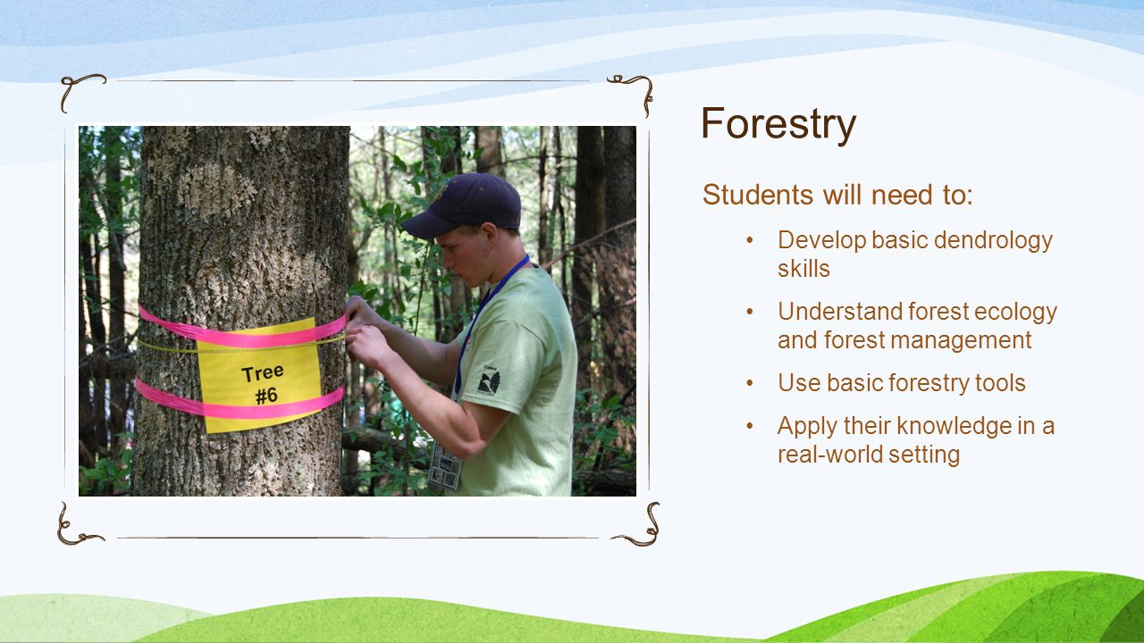 Forestry Students will need to: Develop basic dendrology skills Understand forest ecology and forest management Use basic forestry tools Apply their k