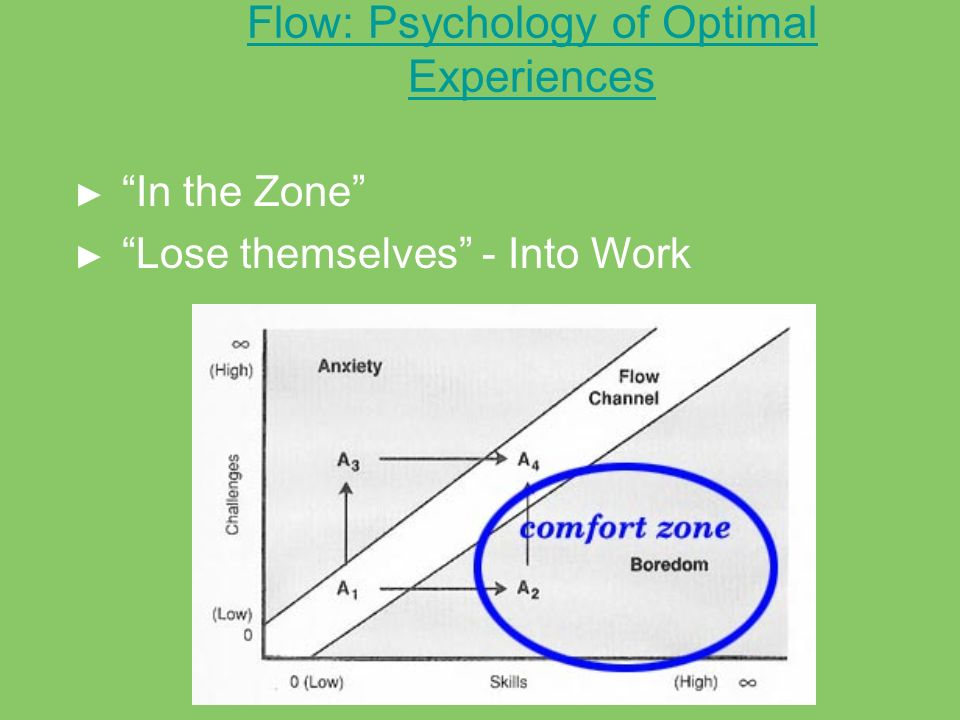 Flow: Psychology of Optimal Experiences In the Zone Lose themselves - Into Work