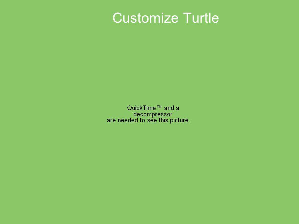 Customize Turtle