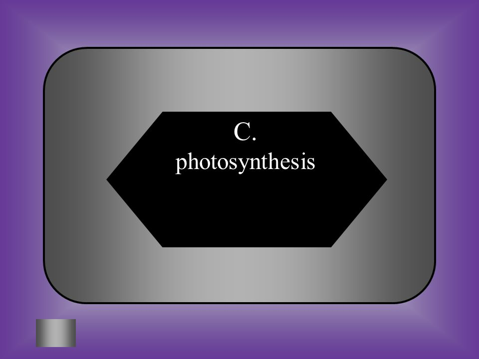 A:B: cellular respirationchloroplasts #1 What is the process by which plants make food? C:D: photosynthesispollination
