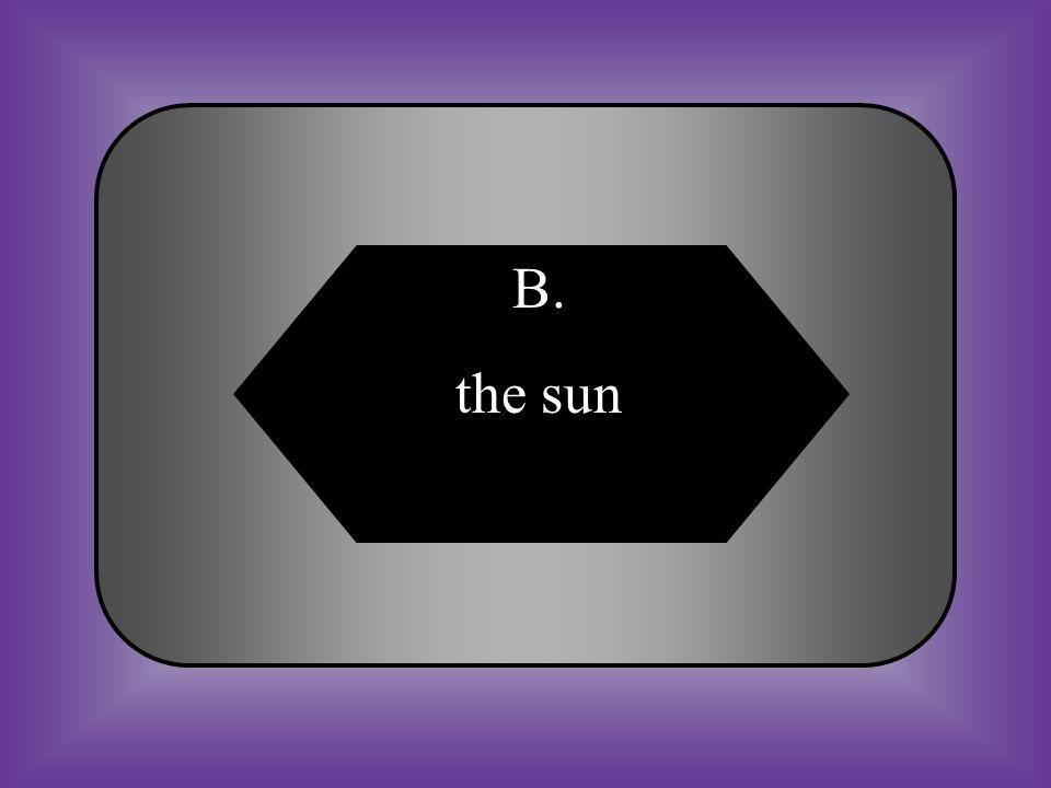 A:B: the nine planetsthe sun #15 All food energy can be traced back to _______. C:D: the soilthe ocean