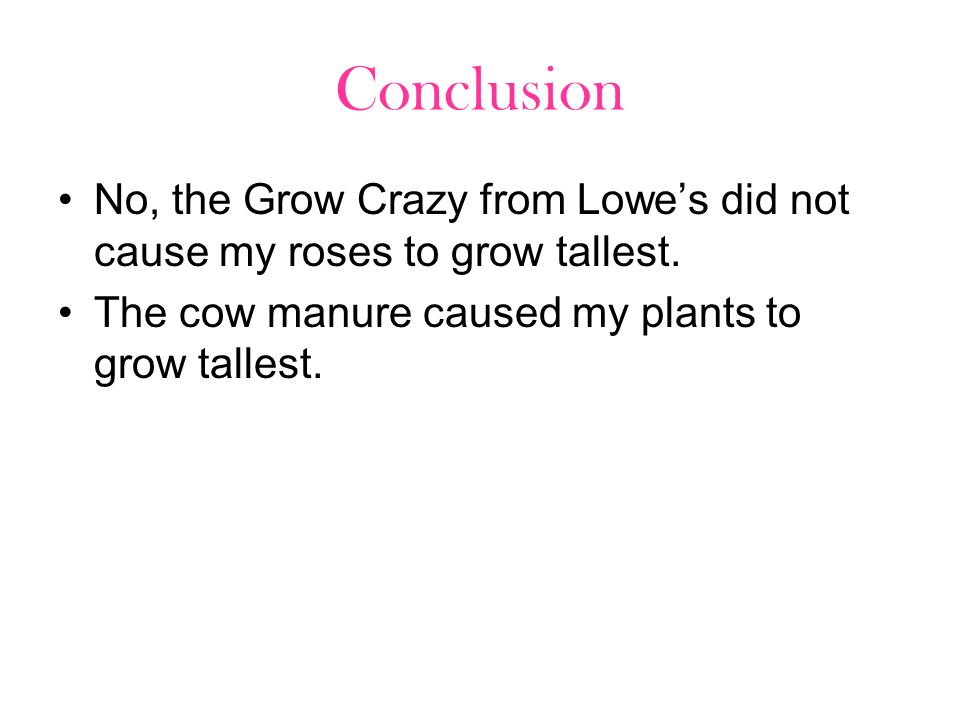 Conclusion No, the Grow Crazy from Lowes did not cause my roses to grow tallest. The cow manure caused my plants to grow tallest.