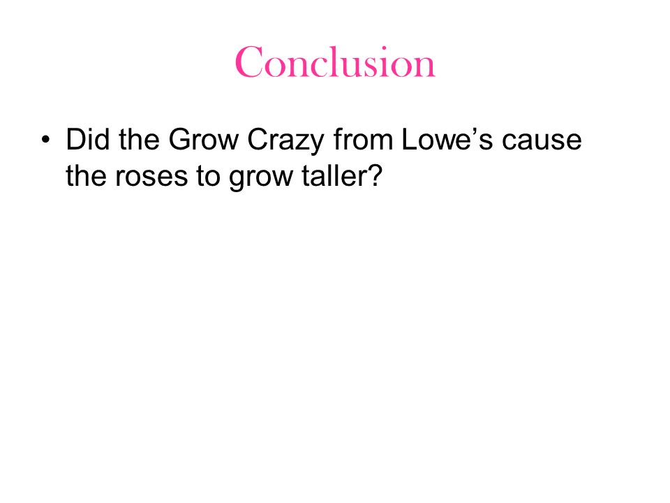 Conclusion Did the Grow Crazy from Lowes cause the roses to grow taller?