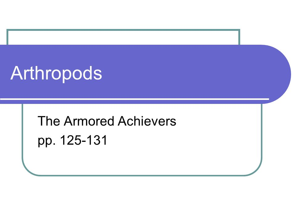 Arthropods The Armored Achievers pp. 125-131