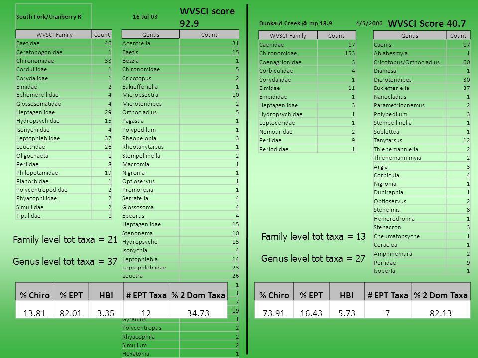 South Fork/Cranberry R16-Jul-03 WVSCI score 92.9 WVSCI FamilycountGenusCount Baetidae46Acentrella31 Ceratopogonidae1Baetis15 Chironomidae33Bezzia1 Cor