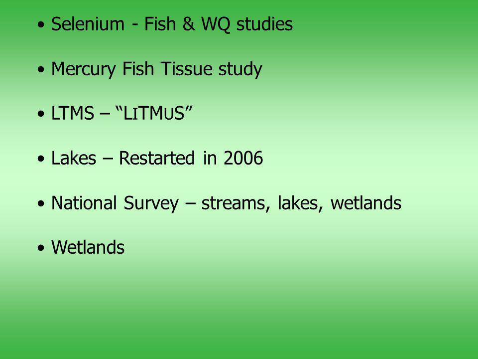 Selenium - Fish & WQ studies Mercury Fish Tissue study LTMS – L I TM U S Lakes – Restarted in 2006 National Survey – streams, lakes, wetlands Wetlands