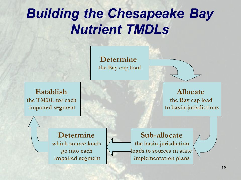 18 Building the Chesapeake Bay Nutrient TMDLs Determine the Bay cap load Allocate the Bay cap load to basin-jurisdictions Sub-allocate the basin-jurisdiction loads to sources in state implementation plans Determine which source loads go into each impaired segment Establish the TMDL for each impaired segment
