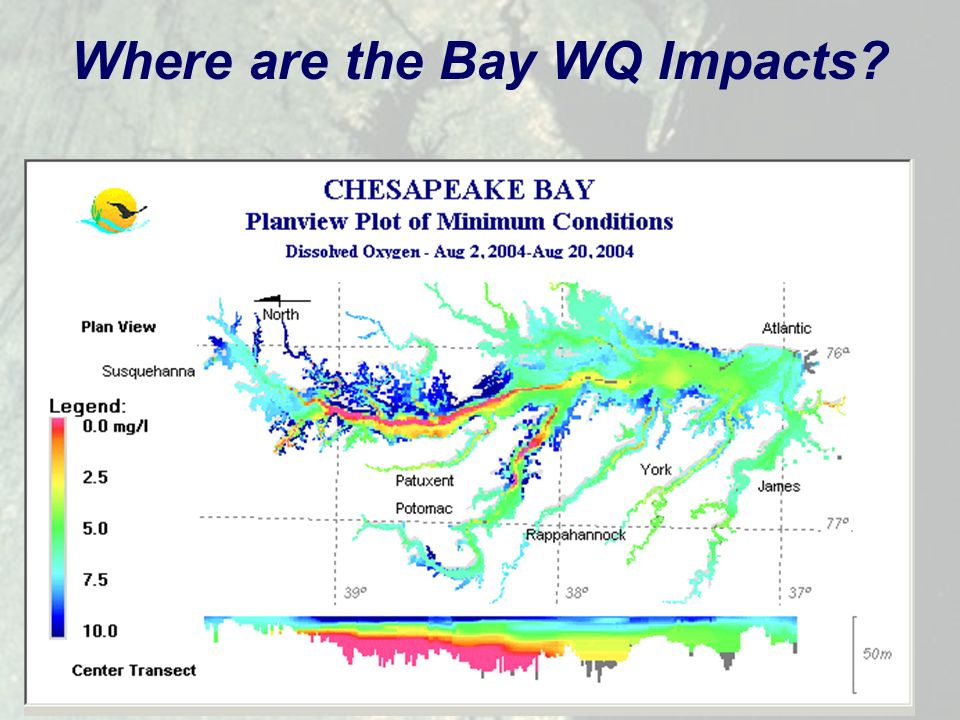 3 Where are the Bay WQ Impacts