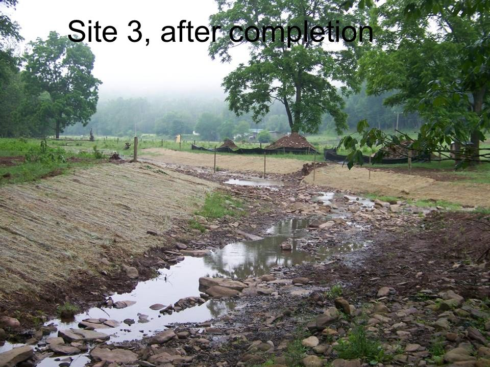 Site 3, after completion