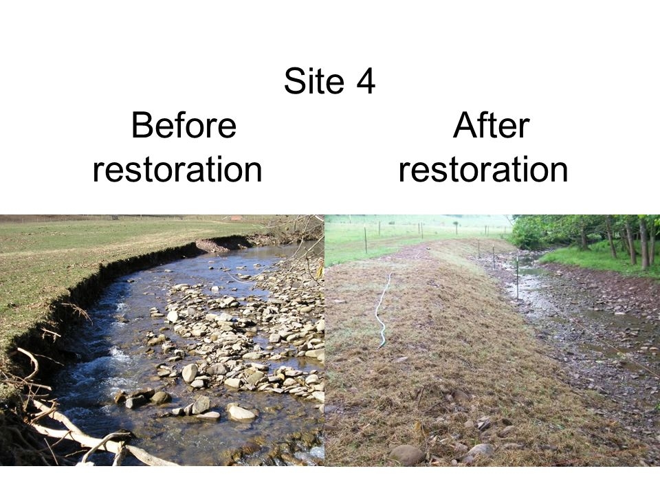 Site 4 Before After restoration restoration